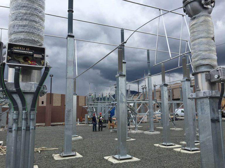 Power Pros EBX Citrus 115V Yard 2